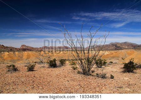 Scenic Southwestern Landscape in Big Bend National Park, Texas