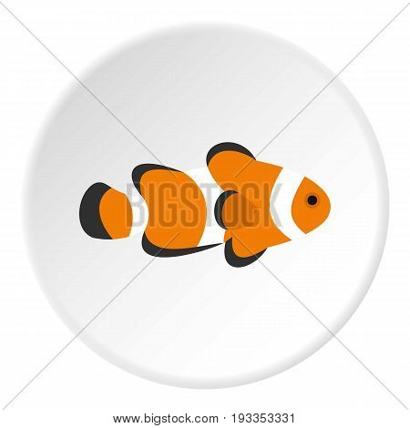 Fish clown icon in flat circle isolated on white vector illustration for web