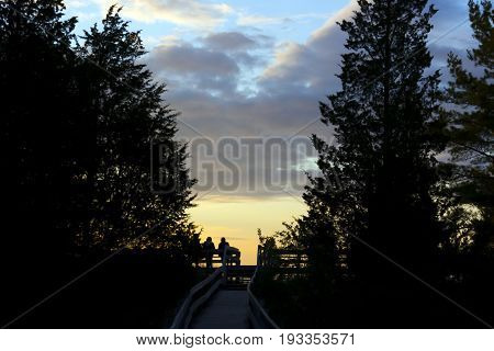 People Sitting On Bench Watching Sunset, Boardwalk And Large Pine Trees