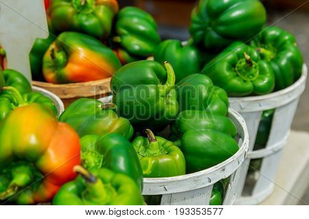 Fresh Yellow, Orange, Green And Red Organic Bell Peppers Capsicum On Display For Sale