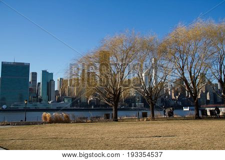 Trees and grass field at Gantry Plaza State Park next to East river and buildings in Manhattan in winter