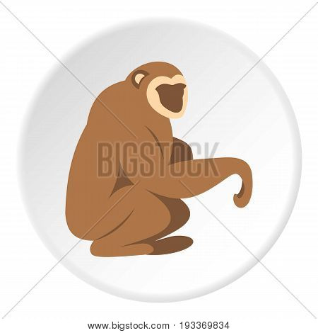 Sitting monkey icon in flat circle isolated on white background vector illustration for web