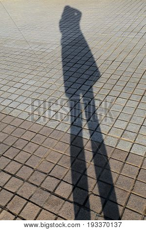 Long shadow of woman figure taking photograph on brick stone pavement background.