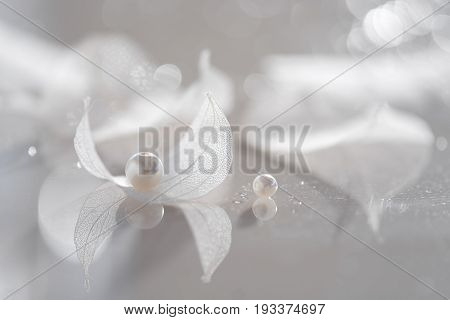 Transparent sheets with pearls . Skeleton leaves on a glass table with reflection. Transparent sheets of white. An artistic image. Selective focus