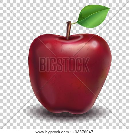 Red Apple. Red apple on a transparent background. Realistic vector