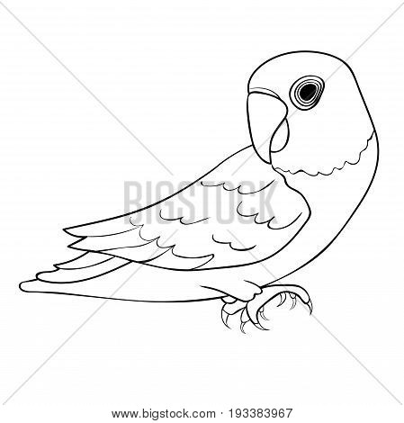 Coloring Masked Lovebird A Blue Parrot. Vector Illustration