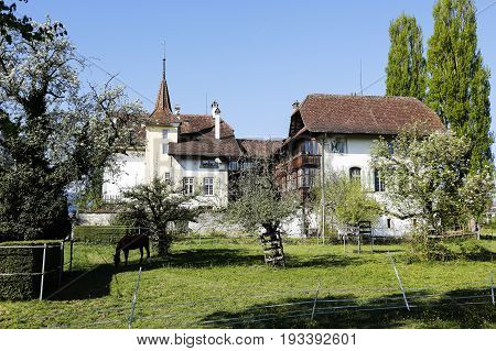 Bern Switzerland - April 14 2017: Wittigkofen Palace It is a house with centuries-old traditions placed in Murifeld of Bern was originally built as a residence for a farm