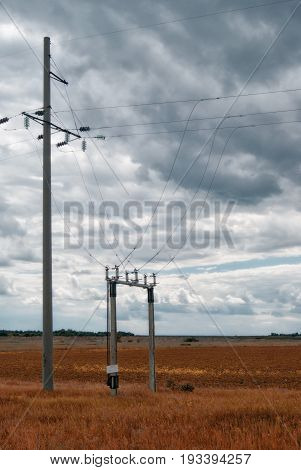 Branch On High-voltage Power Lines In Fields