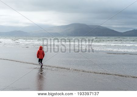 Child Walks On Inch Beach In Ireland