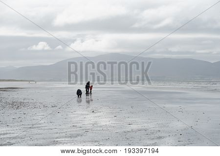 People Walk On Inch Beach