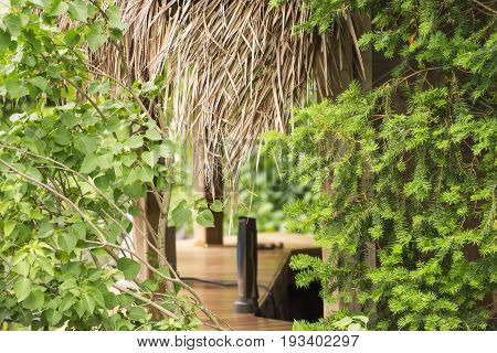 Closeup of backyard tiki bar next to swimming pool detail of leaves fronds counter and speaker. Summer fun concept