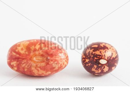 Comparison between dry and soaked bean on white background poster