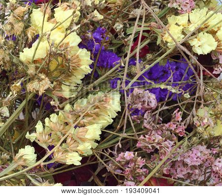Abstract background of colorful dry flower in basket.