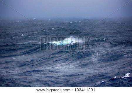 Kara Sea (basin Of Arctic Ocean) In High Arctic