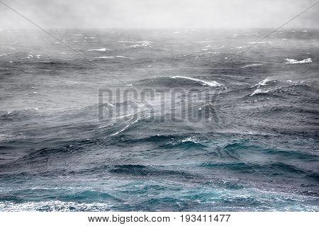 Fog Over Cold Current In Kara Sea