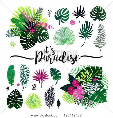 set of exotic bouquet, tropical plants, palm leaves and flowers on a white background. Vector illustration, design elements.