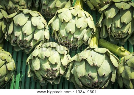 Colourful healthy Artichokes on a market stall