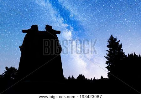Pine Trees Silhouette Milky Way Observatory