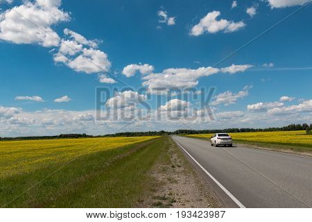 Motorway behind which the blue sky with clouds over the field with yellow flowers