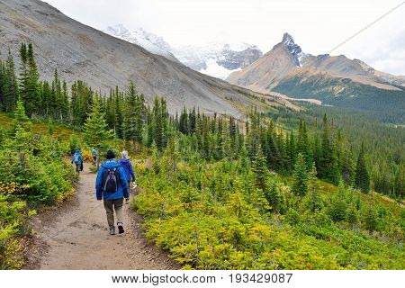 Hikers On The Alpine Trail In The Canadian Rockies Along The Icefields Parkway Between Banff And Jas