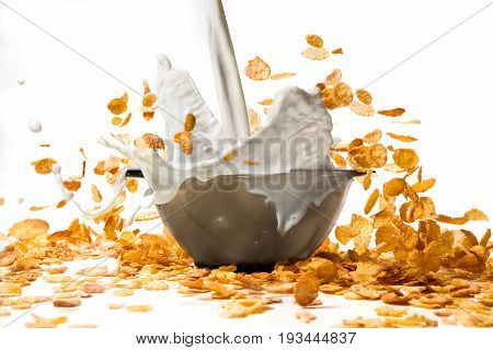 Corn flakes with milk pouring from glass