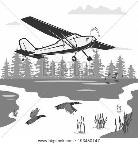 Take care of nature and it will give you beauty. Ecological journey on an airplane. At the bottom of the forest, river, reeds and ducks fly.