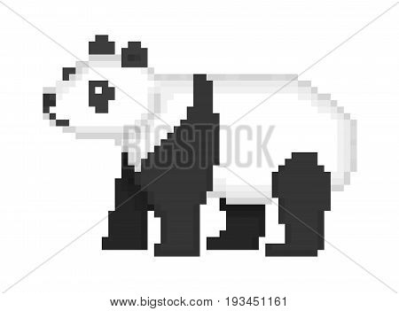 Old school 8 bit pixel art black and white giant banda bear standing on the ground isolated on white background. Chinese endangered species symbol. Wildlife animal icon. Retro video/pc game character.