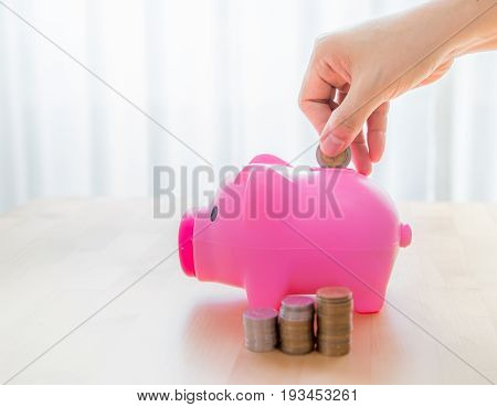 Save money for future,pile coin with piggy bank. hand save growing money concept,Hand put coin on pink piggy bank with green small tree, concept in save money