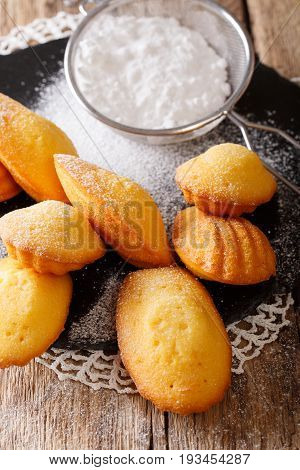 Delicious French Madeleine Cookies Close-up On An Table. Vertical