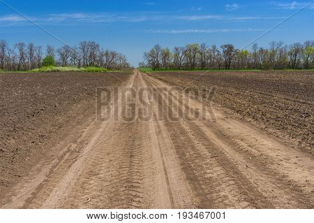 Spring landscape with an earth road between agricultural fields in central Ukraine