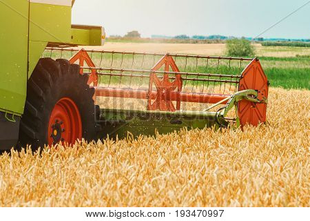 Combine harvester machine harvesting ripe wheat crops in cultivated agricultural field selective focus