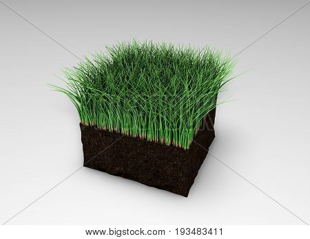3D rendering lawn grass 3D illustration turf athletic fields landscaping and advertising seeding, 3D image.