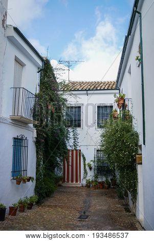Cityscape In White Town Priego De Cordoba In Andalucia, Spain