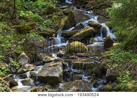 Fast mountain river flowing among mossy stones and boulders in green forest. Carpathians Ukraine