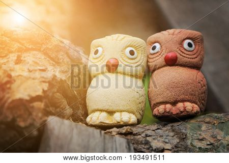 Couple birds two wise owls statues in garden with warm light flare.