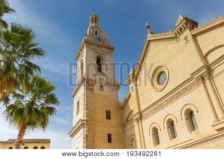 Santa Maria Church And Palm Trees In The Center Of Xativa