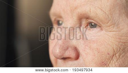 handheld shot of senior woman closeup face portrait near window, wide photo