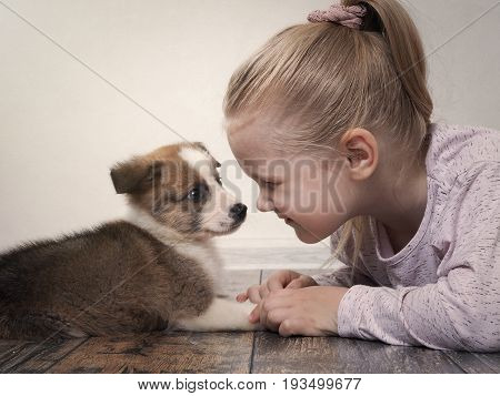 Happy Child And A Small Puppy Lying On The Floor Facing Each Other. Girl Meets Dog