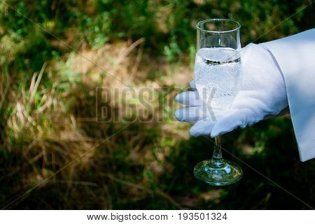 The waiter's hand in a white glove and with a white napkin holds a glass narrow tall champagne glass with water soda on a blurred background of nature green bushes and trees