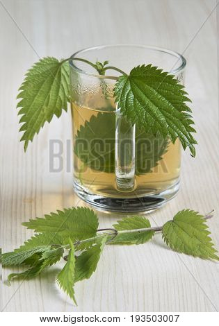 Nettle tea on the wood background leaves in the cup