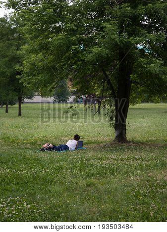Yong Girl Relaxed on Grass under Big Tree Surfing Internet on Laptop