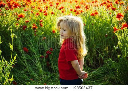 field of flower with child or smiling little boy with long blonde hair in red shirt on poppy natural background summer spring childhood and happiness opium ecology and environment