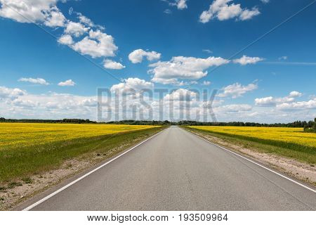 The road going into the distance between two fields