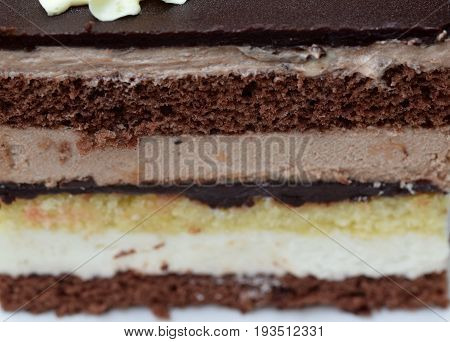 Close and macro view on the delicious layers of Jaffa cake...made from chocolate and orange...https://www.facebook.com/medimurskagibanica/