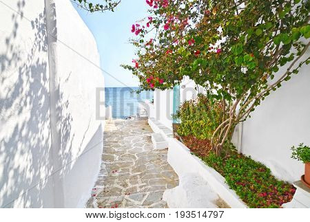traditional architecture of Sifnos island Cyclades Greece with Aegean sea background