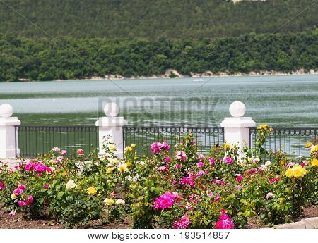 Summer weather lake view seafront Abrau-Durso Russia.