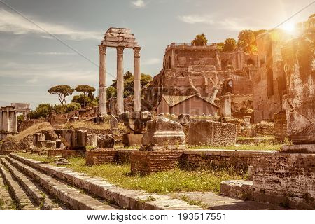 Ruins of the Roman Forum in summer Rome, Italy. The Roman Forum is the remains of architecture of the Roman Empire and is one of the main tourist attractions of Rome.