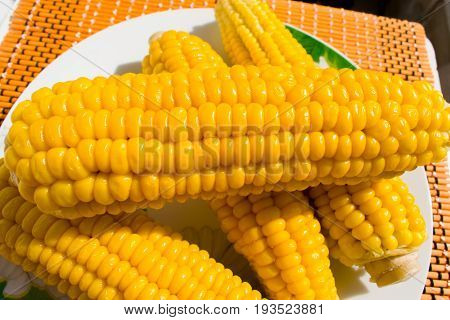 Corn on a plate is very bright, tasteful