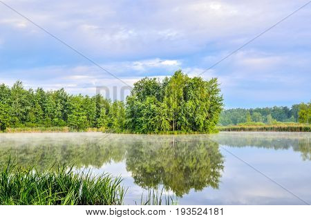 Nature landscape by the lake. Islet with green trees on the lake.