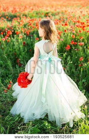 girl model, wedding, fashion concept - festive pale blue elegant dress with cutout and bowknot on back of little girl bridesmaids with a bouquet of poppies in her hand on background of poppy field